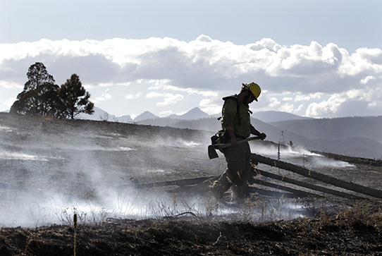 Firefighter walking through a smoking field